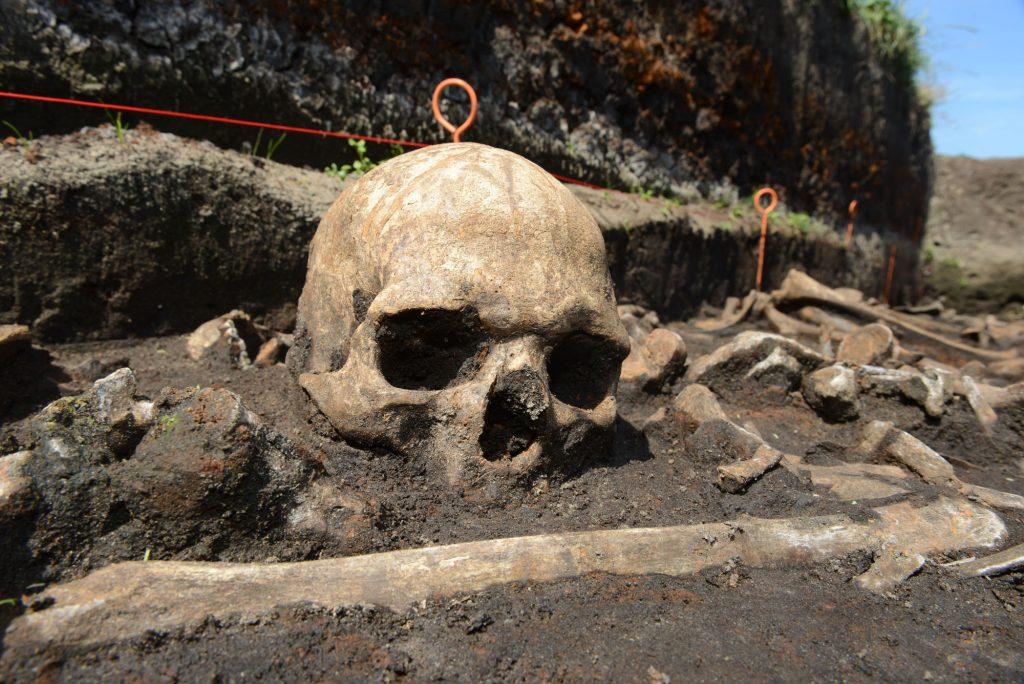 In den gefundenen Knochen konnte z.T. eine Laktasepersistenz nachgewiesen werden.