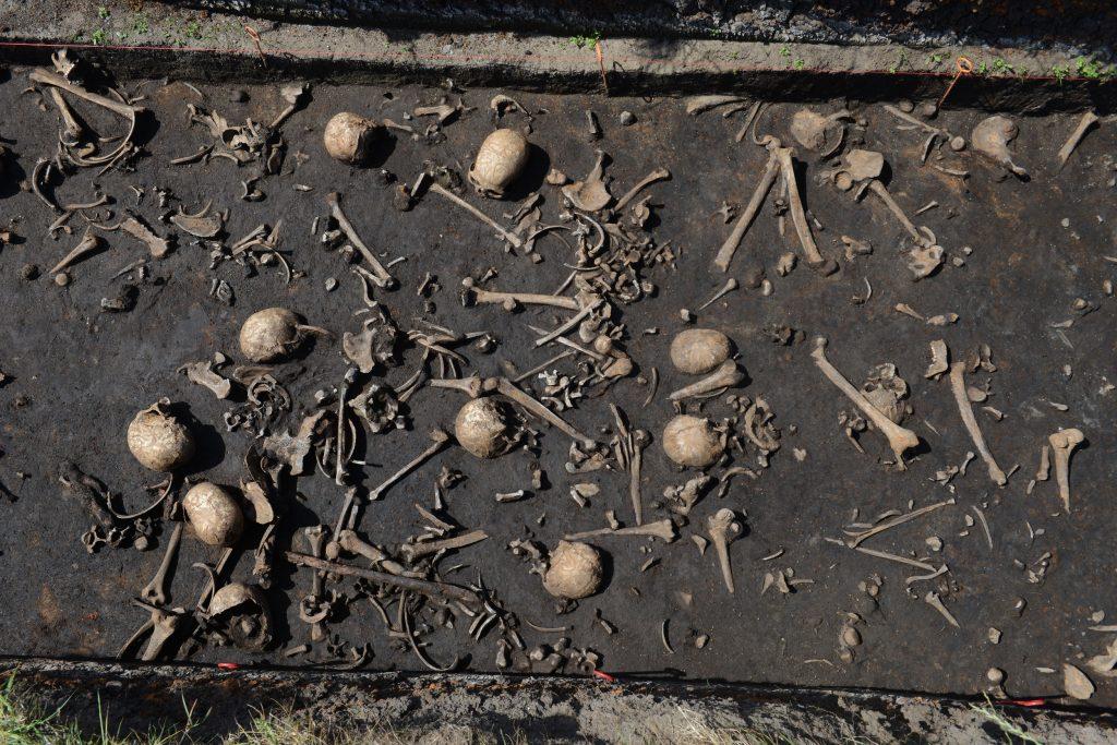 In einem Teil der Gebeine konnte auch eine Laktasepersistenz nachgewiesen werden.