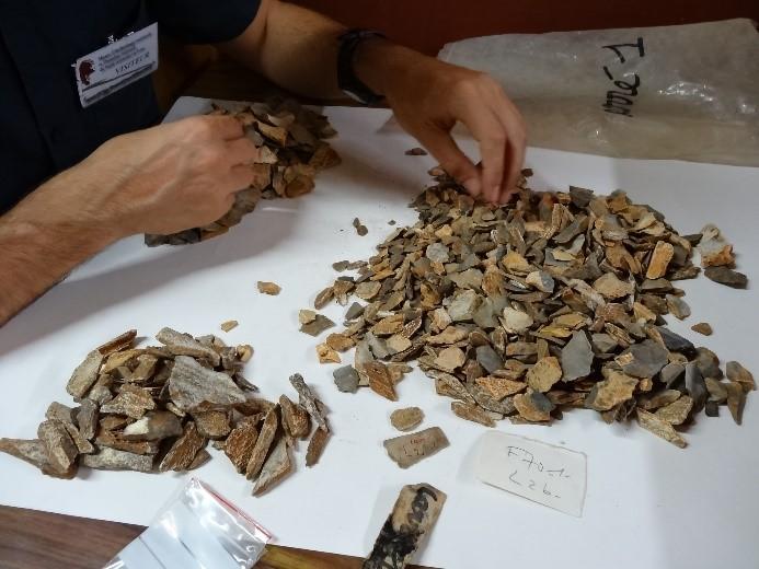 Untersuchung von Material aus den Ausgrabungen der 1970er Jahre im Musée d'archéologie nationale, Frankreich.