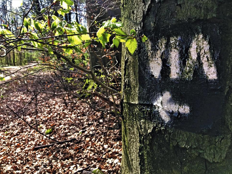Antiker Highway – Die Via Belgica im Rheinland