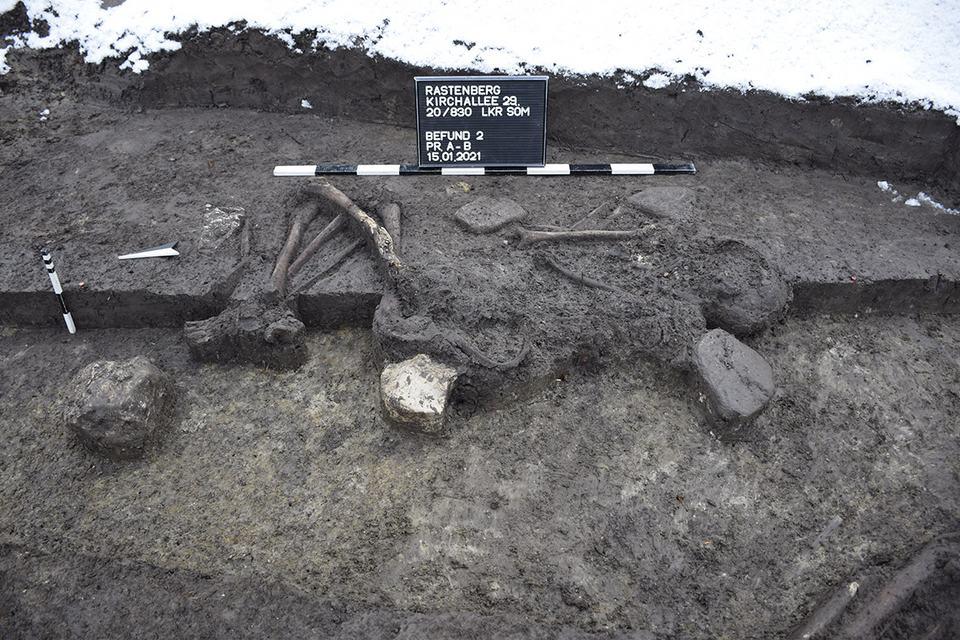 Frühbronzezeitliche Bestattung: Zu sehen ist die bestattete Person in der sog. Hockerstellung: Die Beine und Arme sind dicht an den Körper gezogen. Der Kopf, sowie der Körper, ist mit Blickrichtung nach Osten ausgerichtet worden.