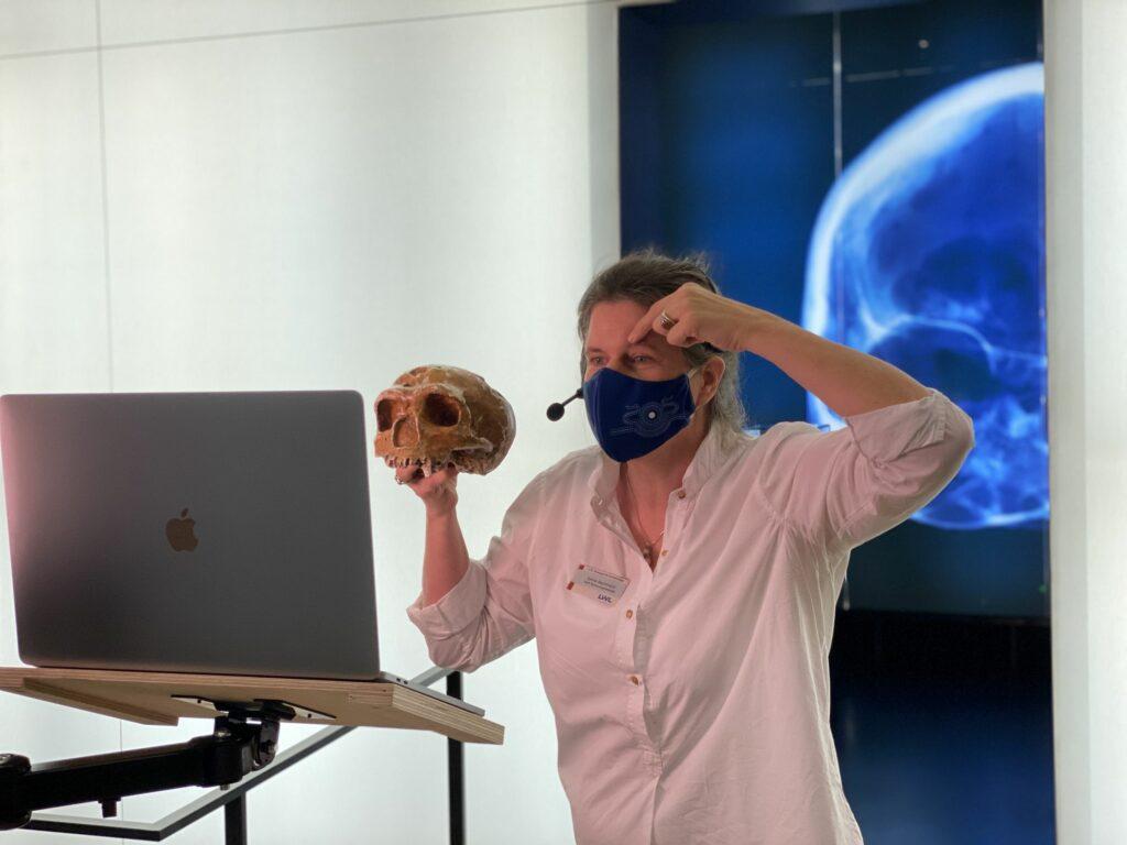 Museumspädagogin Bachmann vom LWL-Museum für Archäologie zeigt einen 40.000 Jahre alten Schädel ganz nah.