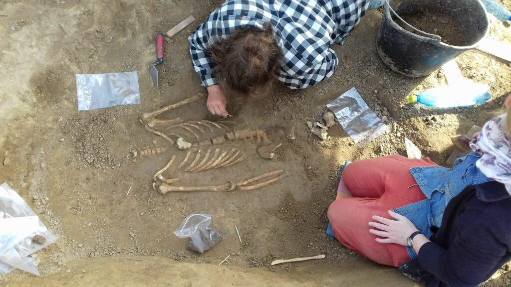 Zwei Studenten legen eine Bestattung aus Vráble frei. Die beiden knien bzw. liegen auf dem Boden. Eine:r der beiden Student:innen entfernt mit Hilfe eines Spachtels den losen Erdboden, der das Skelett verdeckt. Auf dem Foto ist der Oberkörper sowie die Arme des Toten zu sehen.