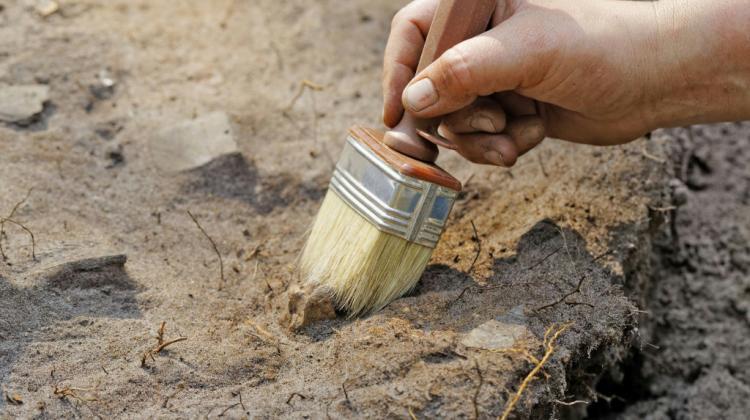 Die Ausgrabung der Pestopfer passierte unter archäologischen Gesichtspunkten.