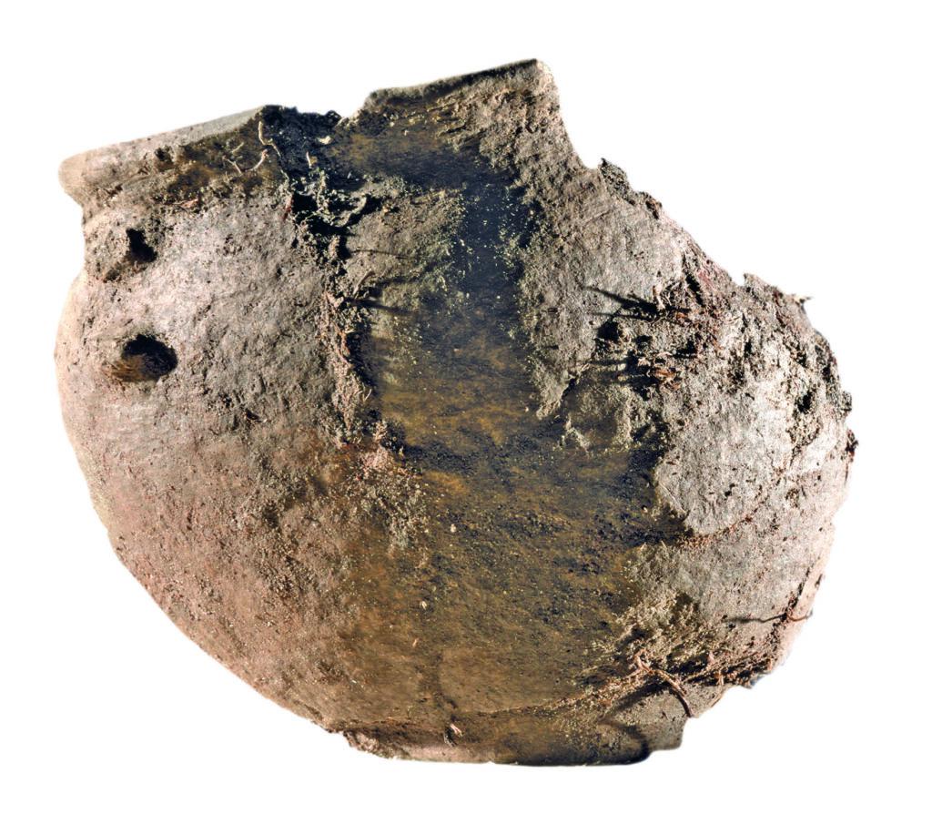 Neuentdeckungen wie dieses Keramikgefäß sind der erste Nachweis von Hinterlassenschaften der Lausitzer Kultur auf der Grießener Hochfläche, abseits der Flussaue.