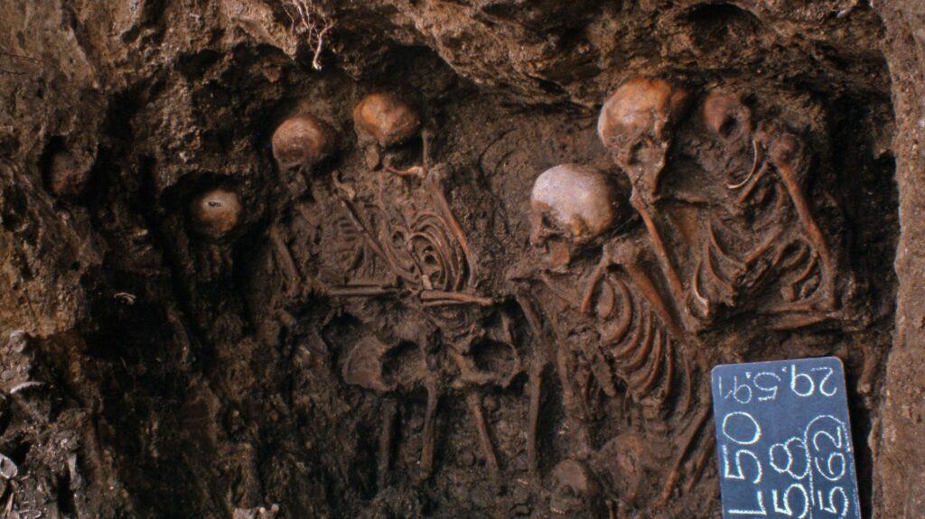 In Proben aus dem mittelalterlichen Massengrab auf dem Gelände des Heiligen-Geist-Hospitals in Lübeck konnte da Forschungsteam das Risikogen für Paratyphus identifizieren.