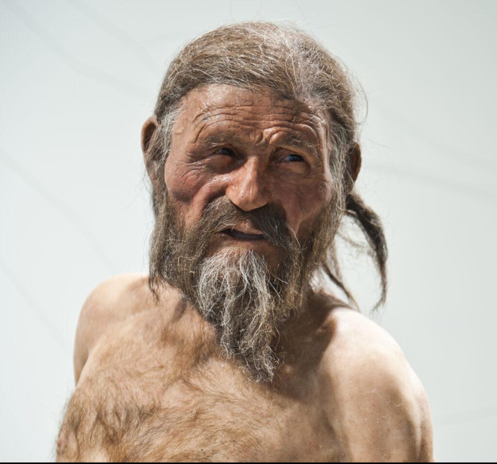 Rekonstruktion von Ötzi, dem Mann aus dem Eis im Südtiroler Archäologiemuseum.