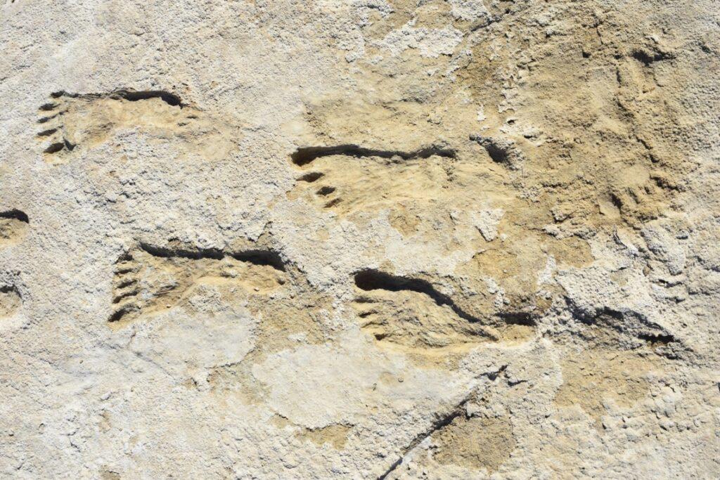 Das Bild zeigt für der gefunden Fußabdrücke.